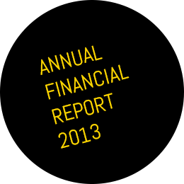Annual financial report 2013